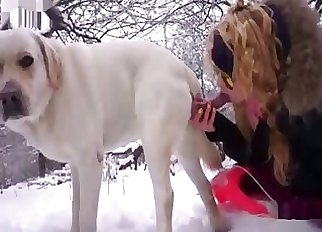 Shades-wearing inexperienced sucking dog cock